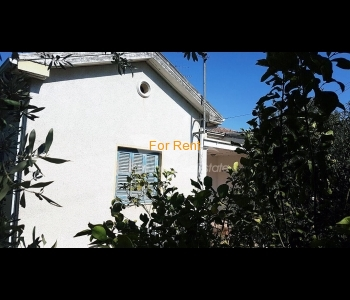 2 bedroom house for rent in Ayios Dhometios, ID 858